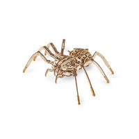 Mechanical Spider on rubber-band engine with moving legs