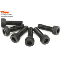 2.5x8mm Steel Cap Screw (6)